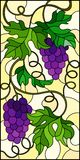 Stained glass illustration with a bunch of red grapes and leaves on a yellow  background,vertical image. The illustration in stained glass style painting with a Stock Photos