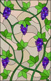 Stained glass illustration with a bunches of red grapes and leaves on beige background. The illustration in stained glass style painting with a bunches of red Royalty Free Stock Photo