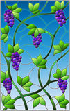 Stained glass illustration with a bunches of red grapes and leaves on sky background. The illustration in stained glass style painting with a bunches of red Stock Photo