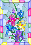 Stained glass illustration with colored irises in a bright frame. Illustration in stained glass style with flowers, buds and leaves of iris Royalty Free Stock Photo
