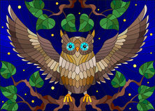 Stained glass illustration with fabulous colourful owl sitting on a tree branch against the starry sky Stock Images