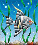 Stained glass illustration with  fish scalar on the background of water and algae. Illustration in stained glass style fish scalar on the background of water and Stock Photo