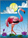Stained glass illustration  with Flamingo , Lotus flowers and reeds on a pond in the sun, sky and clouds Stock Photos