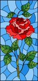 Stained glass illustration flower of red rose on a blue background. Illustration in stained glass style flower of red rose on a blue background Royalty Free Stock Images
