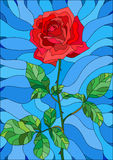 Stained glass illustration  flower of red rose on a blue background. Illustration in stained glass style flower of red rose on a blue background Royalty Free Stock Photography
