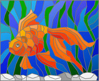 Stained glass illustration with gold fish. Illustration in stained glass style with gold fish on the background of water and algae Stock Images