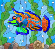 Stained glass illustration  mandarin fish on the background of water and algae. Illustration in stained glass style  mandarin fish on the background of water and Stock Photo