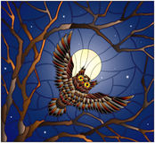 Stained glass illustration painting with the owl in the night starry sky and moon in between the branches of the tree Royalty Free Stock Photography