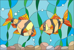 Stained glass illustration with a pair of aquarium fish barbs. Illustration in stained glass style with a pair of barbs on the background of water and algae Royalty Free Stock Photography