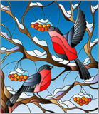 Stained glass illustration with a pair of bullfinches, on the background of snow-covered mountain ash tree Stock Photography