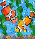 Stained glass illustration with a pair of clown fish on the background of water and algae. Illustration in stained glass style with a pair of clown fish on the Stock Image