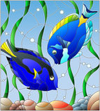 Stained glass illustration with a pair of fish surgeon on the background of water and algae Stock Image