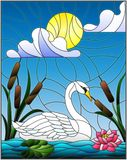 Stained glass illustration  with Swan , Lotus flowers and reeds on a pond in the sun, sky and clouds Stock Photo