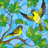 Stained glass illustration  on the theme of summer, two siskin in the sky and maple leaves Stock Image