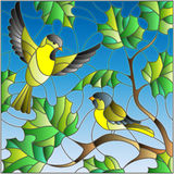 Stained glass illustration  on the theme of summer, two siskin in the sky and maple leaves Stock Images