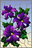 Stained glass illustration  with three bright purple flowers of Petunia, buds and leaves on a blue background Stock Photos