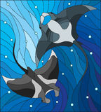 Stained glass illustration with two manta rays manta rays on the background of water and air bubbles. Illustration in the style of stained glass with two manta Royalty Free Stock Photos