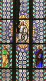Stained Glass - Jesus holding the Holy Bible and saints Stock Image