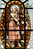 Stained Glass - John the Baptist Stock Images