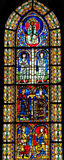 Stained Glass of King Solomon in Cathedral of Strasbourg Royalty Free Stock Images