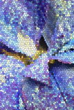 Stained Glass Leaves. Leaves of a blue pointesetta plant,stained glass filter applied Stock Image