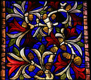 Stained Glass in Leon Royalty Free Stock Images