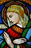 Stained glass with madonna image  Stock Images