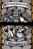 Stained-glass panel in the mus royalty free stock photo