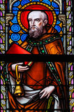 Stained Glass - Saint Anthony the Hermit Royalty Free Stock Photography