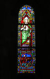 Stained Glass Of Saint Blaise Stock Image