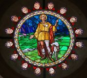 Stained Glass of Saint Roch in Bologna Stock Photos