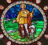 Stained Glass of Saint Roch in Bologna Royalty Free Stock Photos