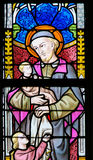 Stained Glass - Saint Vincent de Paul Royalty Free Stock Photography