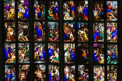 Stained Glass Saints aligned. royalty free stock images
