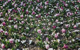 The stained glass texture of a field of flowering tulips. In white-pink-green-brown color scheme Royalty Free Stock Images