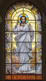 Stained glass vindow Royalty Free Stock Images