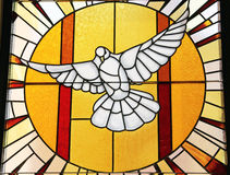 Stained glass white dove with setting sun Stock Photo