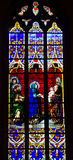 Stained glass window. In the Notre Dame de Luxembourg Royalty Free Stock Photography