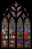 Stained glass window. Of the Chester Cathedral, United Kingdom Royalty Free Stock Photo