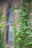 Stained glass window brick climbing vines Stock Photos