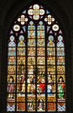 Stained glass window at Cathedral in Brussels Stock Images