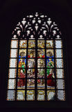 Stained glass window in Cathedral of Our Lady Stock Images