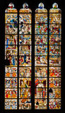 Stained glass window from Cologne Cathedral. Stained glass window of St. Peter and Tree of Jesse  in the Cologne Cathedral Royalty Free Stock Image
