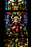 Stained glass window detail in Cluj Napoca. Saint Michael church Stock Image