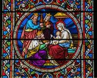 Stained glass window nativity scene Stock Photos