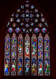 Stained glass window panel Royalty Free Stock Photos