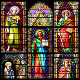 Stained glass window. Photo collage of Scenes of the Bible. Stained glass window in the Cathedral of Meze, South of France Royalty Free Stock Images