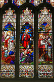 Stained glass Windows Royalty Free Stock Image