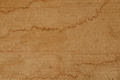Stained paper Royalty Free Stock Photos