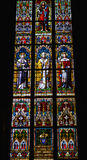 Stained windows Royalty Free Stock Photos